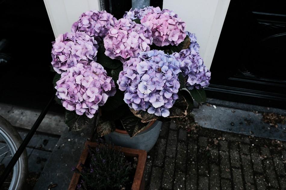 Amsterdam_0053